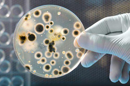 Triệu chứng khi nhiễm HPV